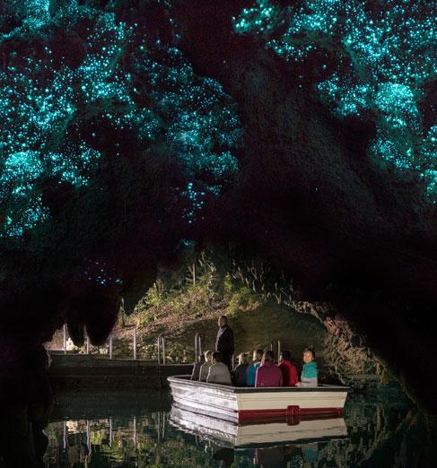 waitomo-caves